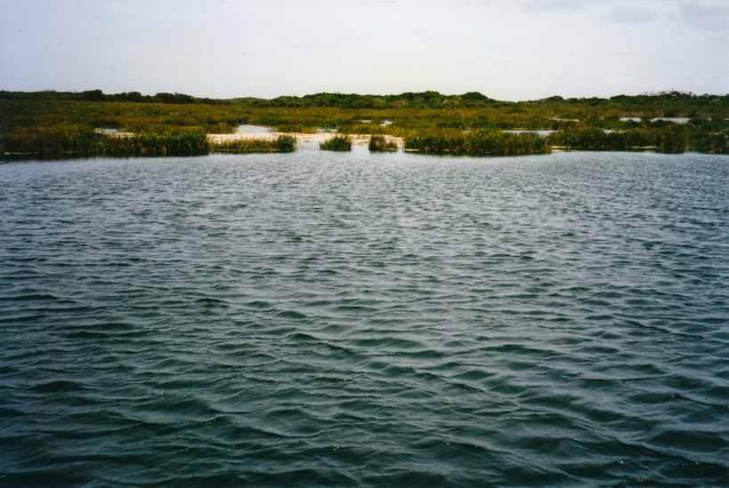 02-02-1998 01 Picaninnie Ponds.jpg