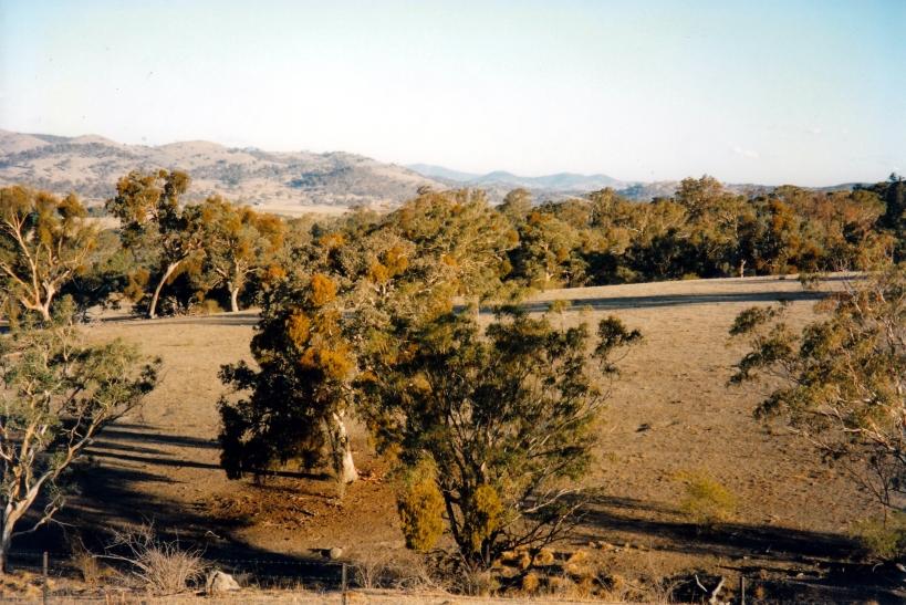 03-17-1998-01-tharwa-area