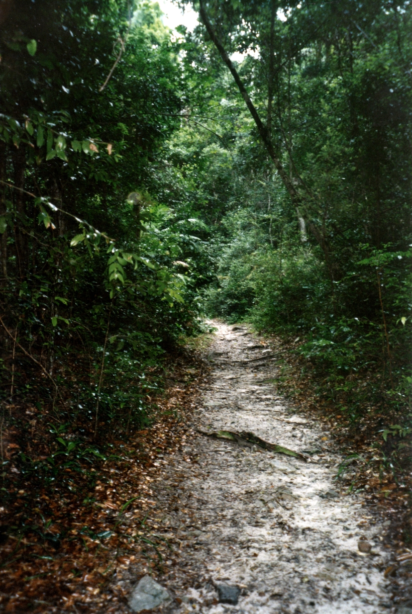 04-23-1998 03 track to Lake Poona in rain.jpg