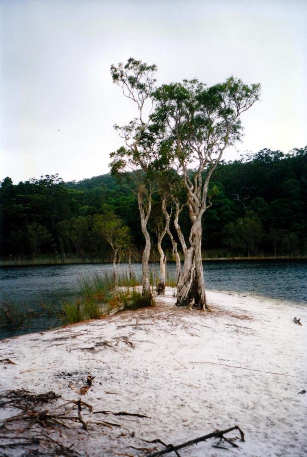 04-23-1998 04 Lake Poona.jpg