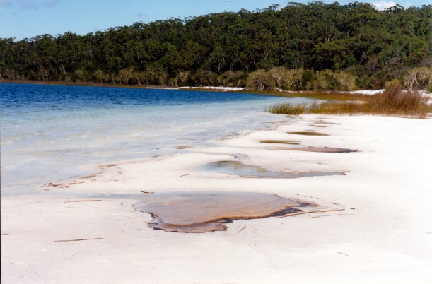 05-10-1998 09 Lake Birrabeen beach.jpg