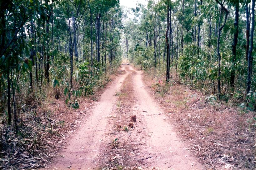 08-03-1998 01 Vrilya tk goes round fallen trees.jpg