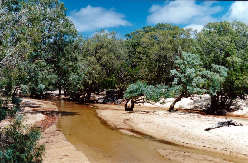 08-22-1998 09 Archer River.jpg