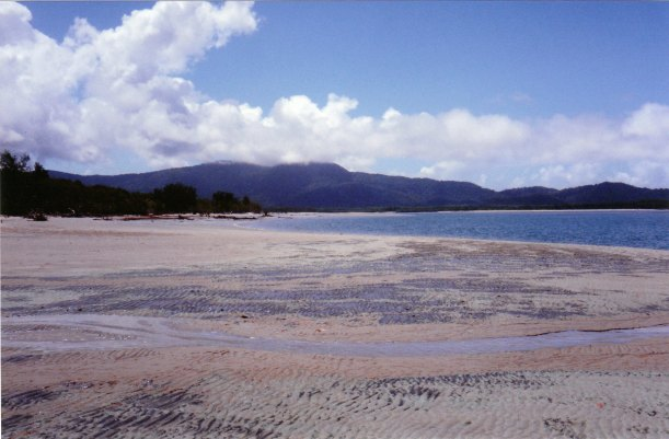 09-03-1998-03-daintree-mouth