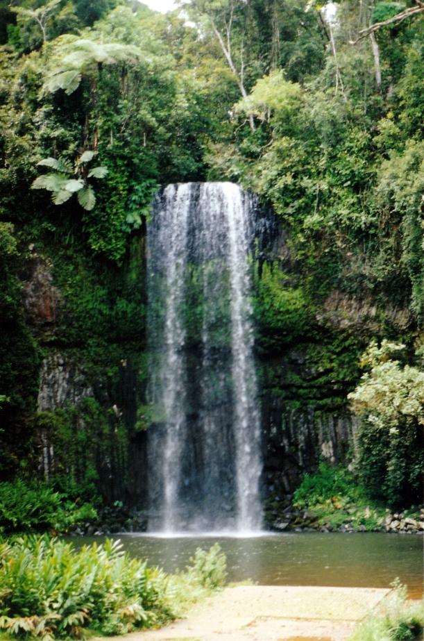 11-04-1998 05 millaa millaa falls.jpg