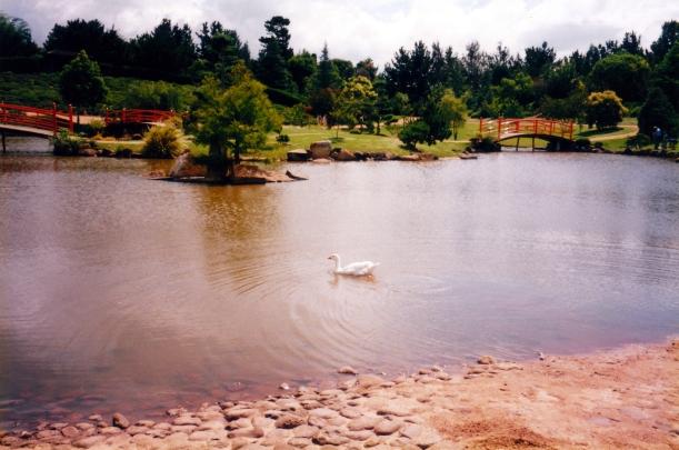 01-06-1999 Japanese Gardens scene.jpg