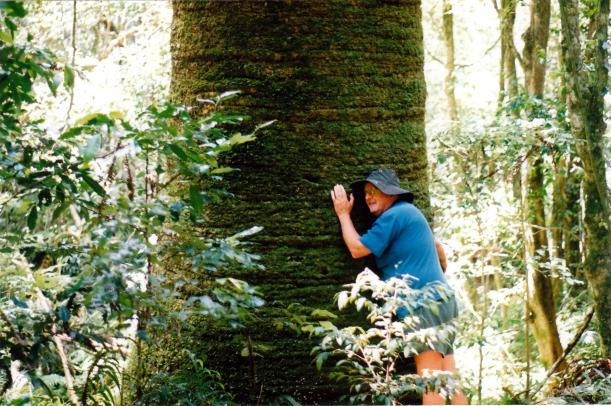 01-07-1999-bunya-mts-nat-park