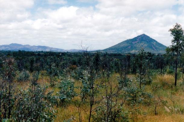12-14-1998 Mt Leura near Rubyvale.jpg