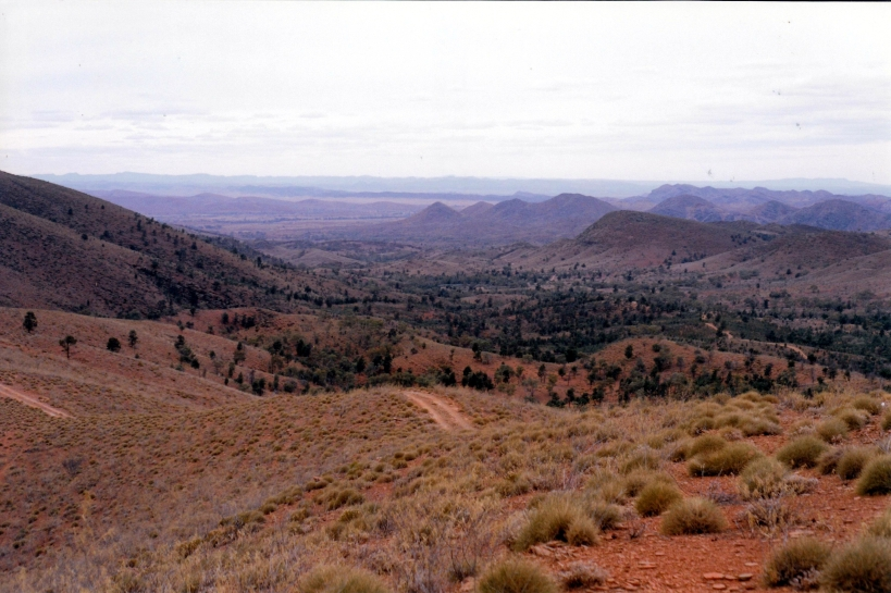 05-11-1999 15 Skytrek view to NE.jpg