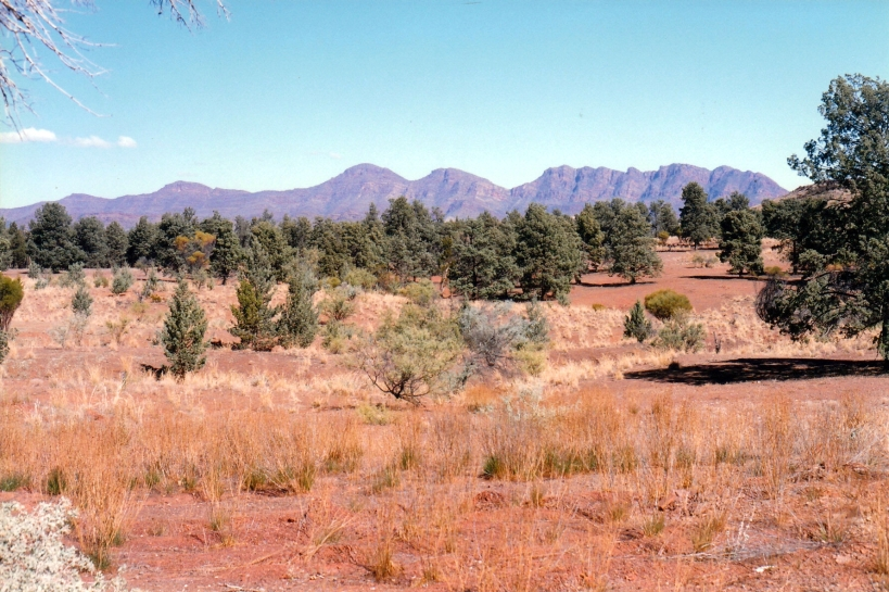 05-12-1999 01 heysen range from stock yard and huts
