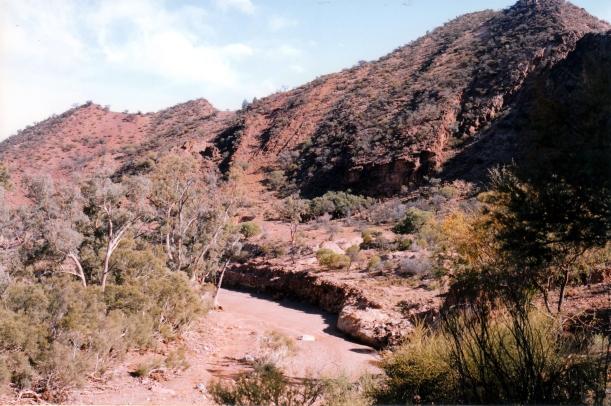 05-13-1999 03 Mt Billy Ck