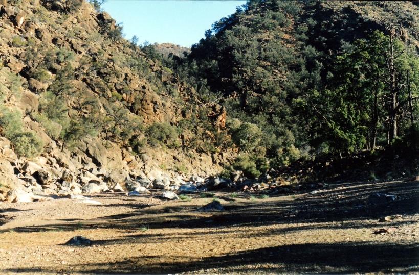 05-17-1999 07 wilawillina gorge