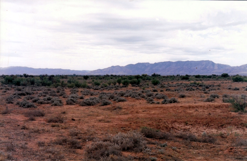 05-18-1999 01 flinders from near parachilna.jpg