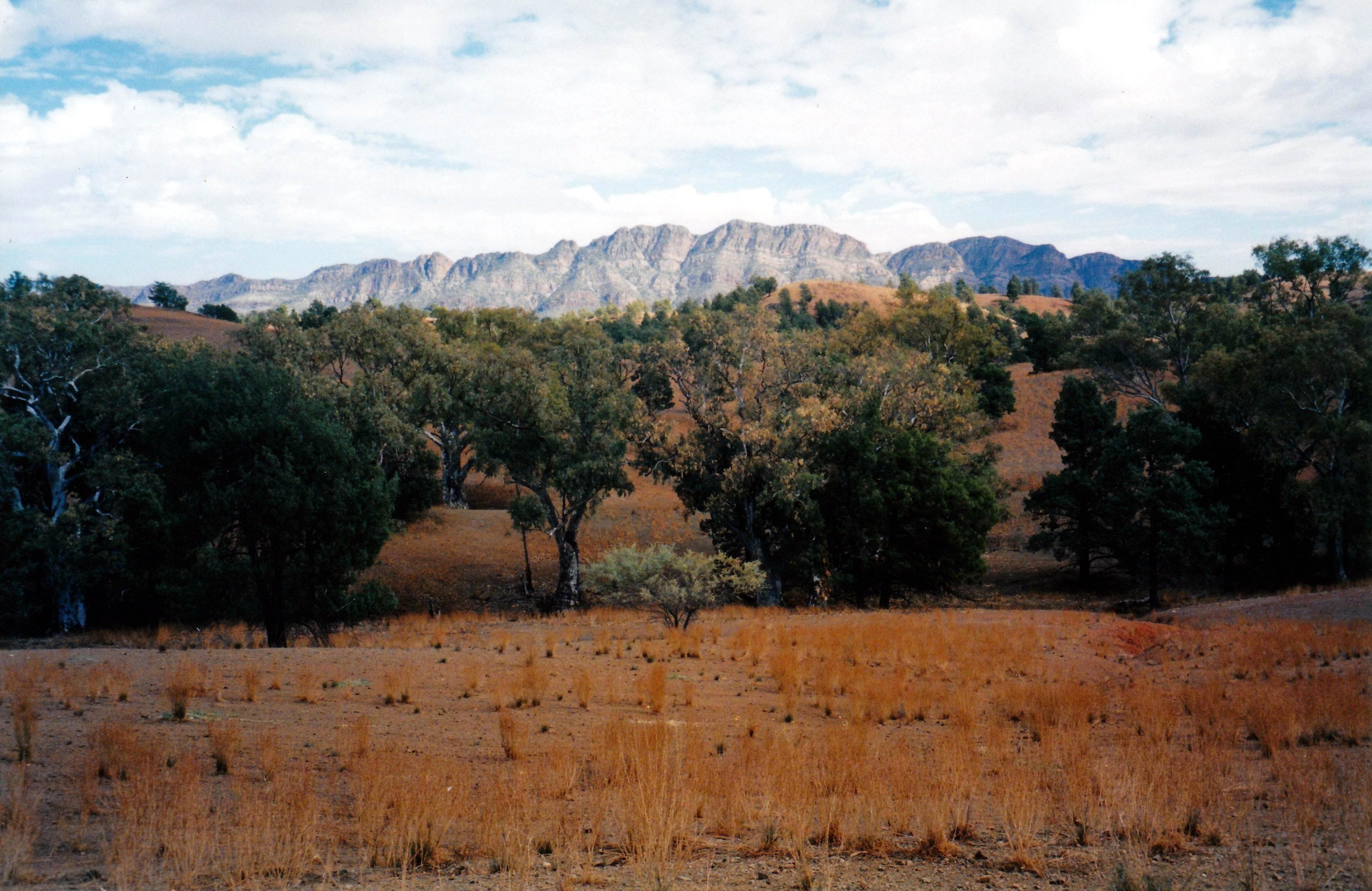 05-19-1999 01 Elder Range from Moralana track