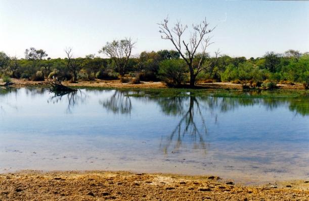 05-25-1999 02 muloorina camp waterhole