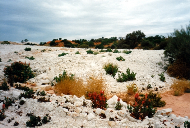 05-30-1999 at Mintabie opal fields