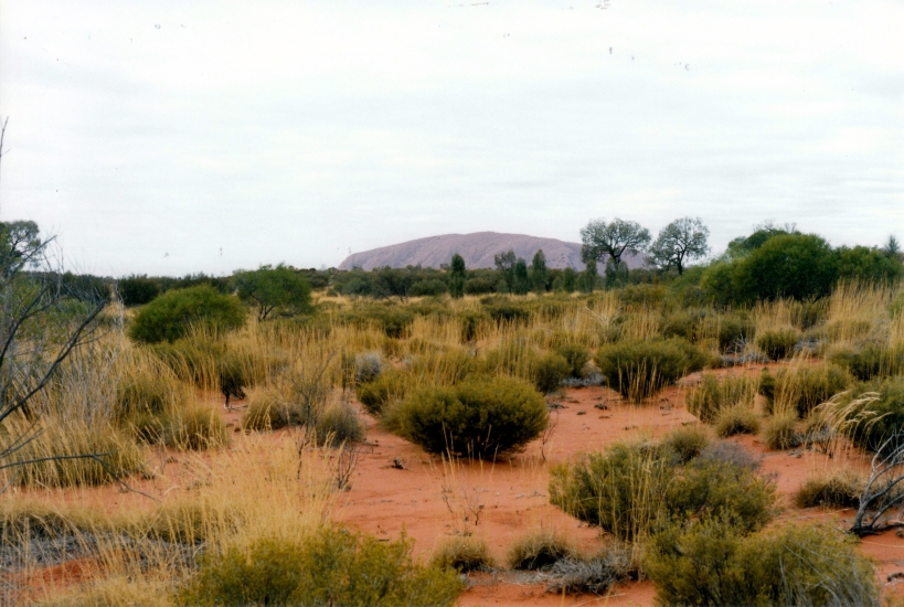 06-07-1999 20 Ayers Rock from Olgas rd.jpg
