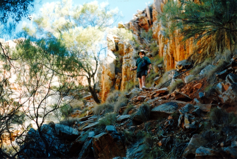 06-23-1999 04 goat tk at head of Standley Chasm valley.jpg