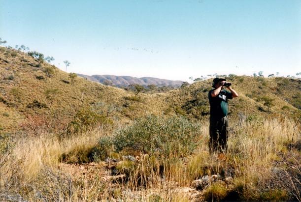 06-28-1999 08 Ellery Creek country