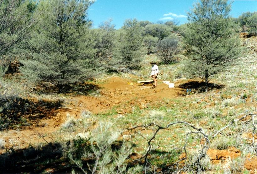 07-29-1999 01 new garnet fossicking area.jpg