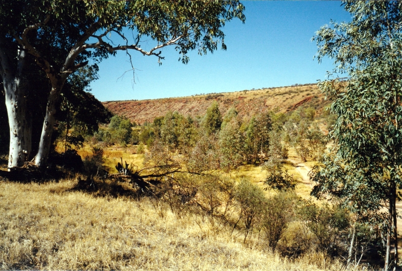 08-10-1999 track in the Finke gorge.jpg