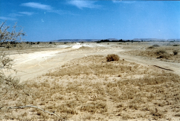 08-15-1999 05  Glue Pot bog Spring Ck Delta Tk.jpg
