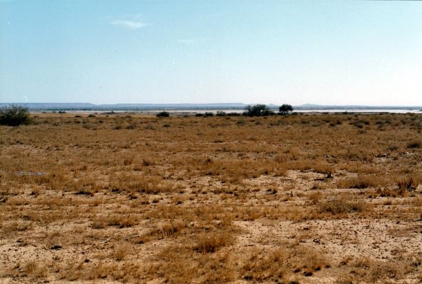 08-15-1999 06 Freeth Junction where Finke ends in desert salt pan
