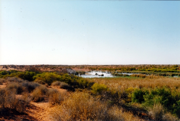 08-15-1999 14 view over Purni Bore to camp area