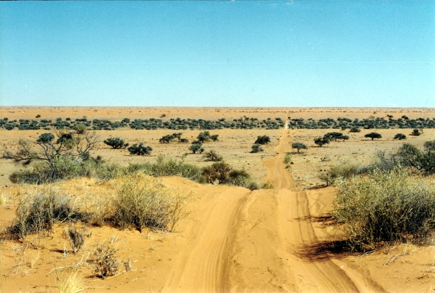 08-19-1999 03  QAA Line creek line and more dunes.jpg