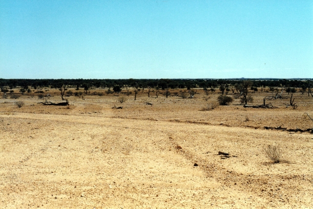 08-22-1999 georgina r floodplains.jpg