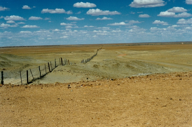 09-01-1999 17  dog fence and moon plain.jpg