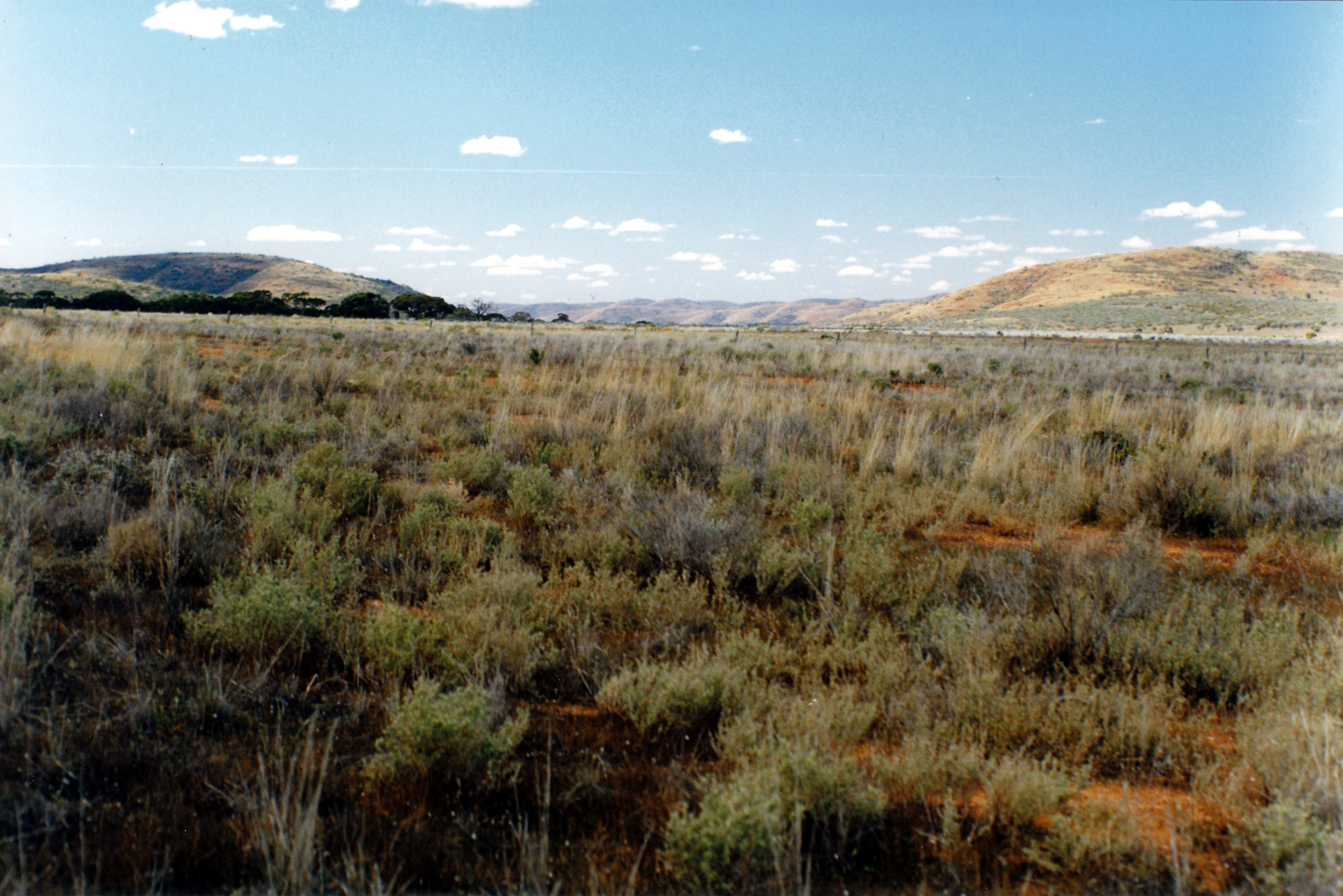 09-07-1999 01 Gawler ranges from Yardea road.jpg