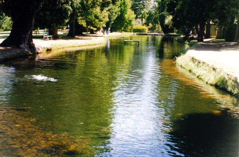 01-06-2000 plenty ponds.jpg