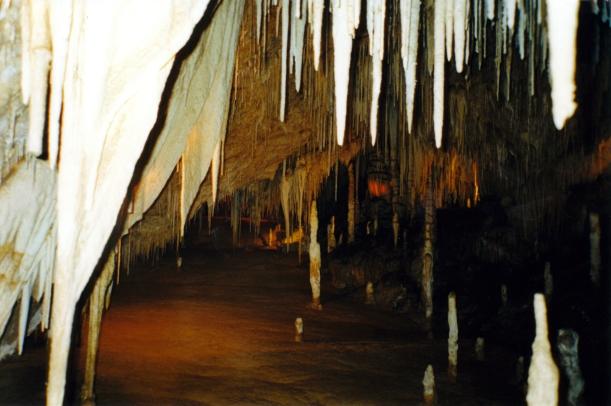 01-30-2000 Hastings Caves backlit effect.jpg