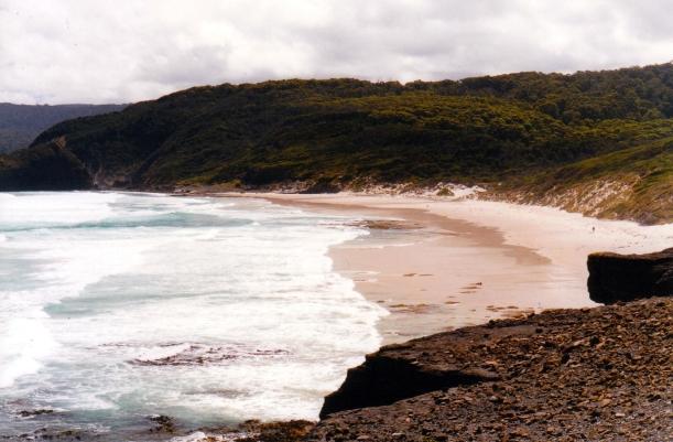 01-31-2000 south cape bay beach