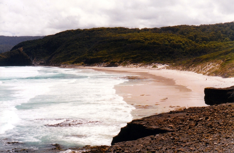 01-31-2000 south cape bay beach