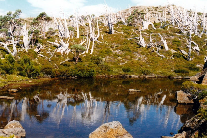02-17-2000 29  tarn shelf scene.jpg