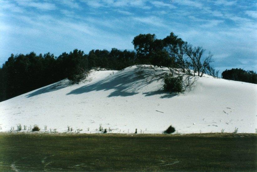 12-06-1999 Lagoon Beach dune.jpg