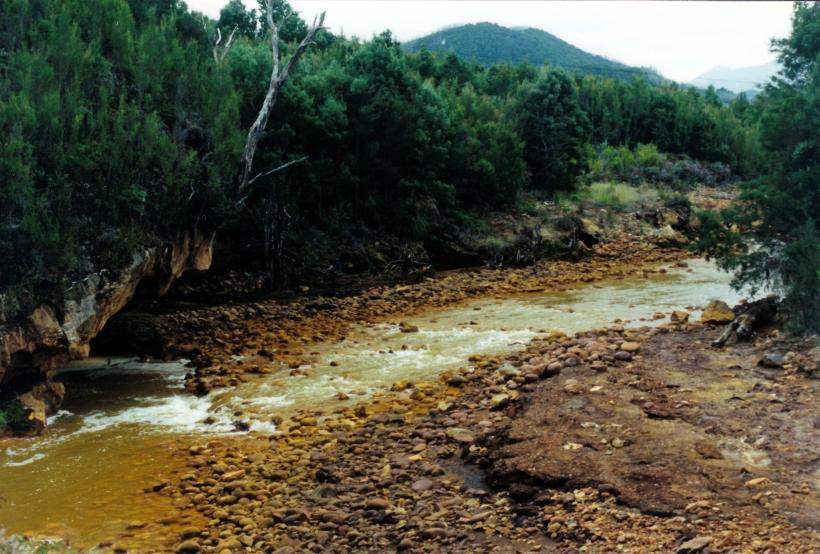 03-05-2000 Queen River near Queenstown.jpg