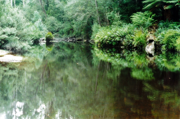 03-15-2000 Black River.jpg
