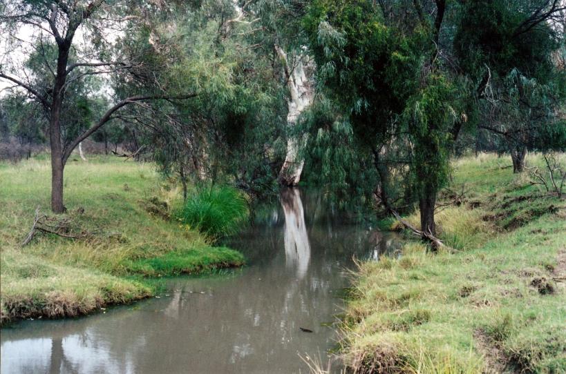 05-02-2000 barcoo waterhole tambo