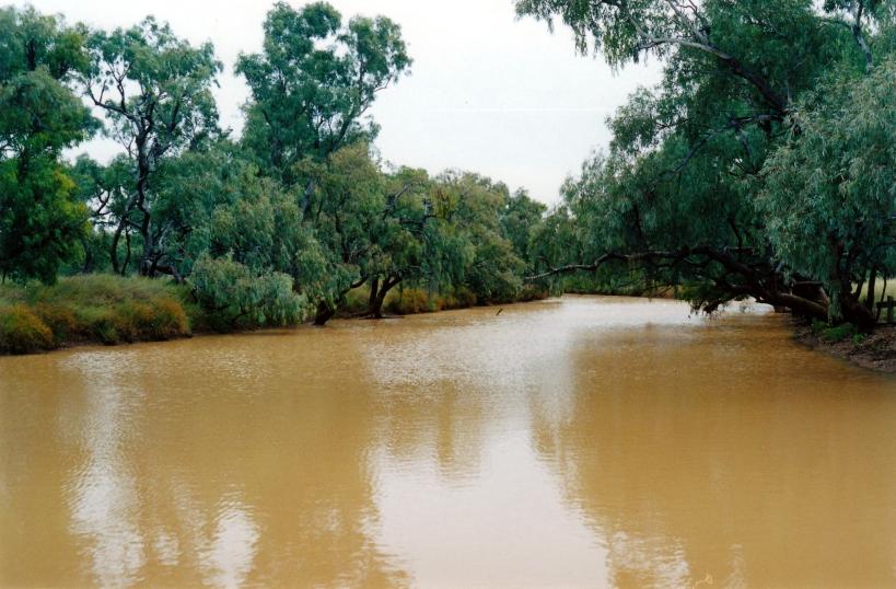 06-06-2000 combo waterhole.jpg