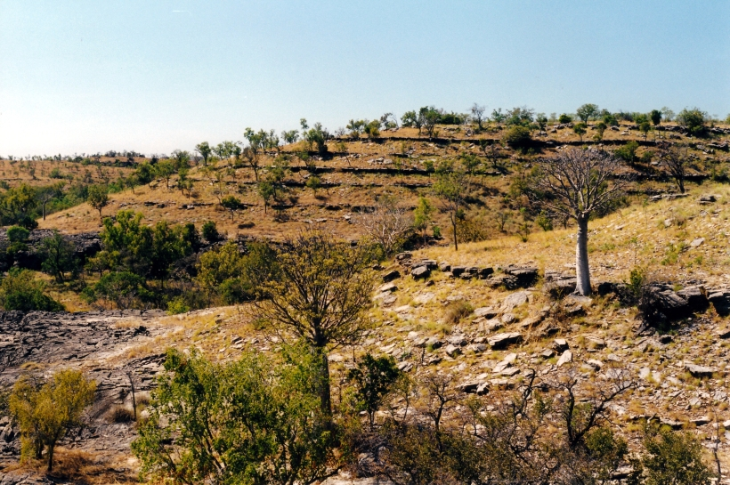 06-22-2000 01 limestone gorge