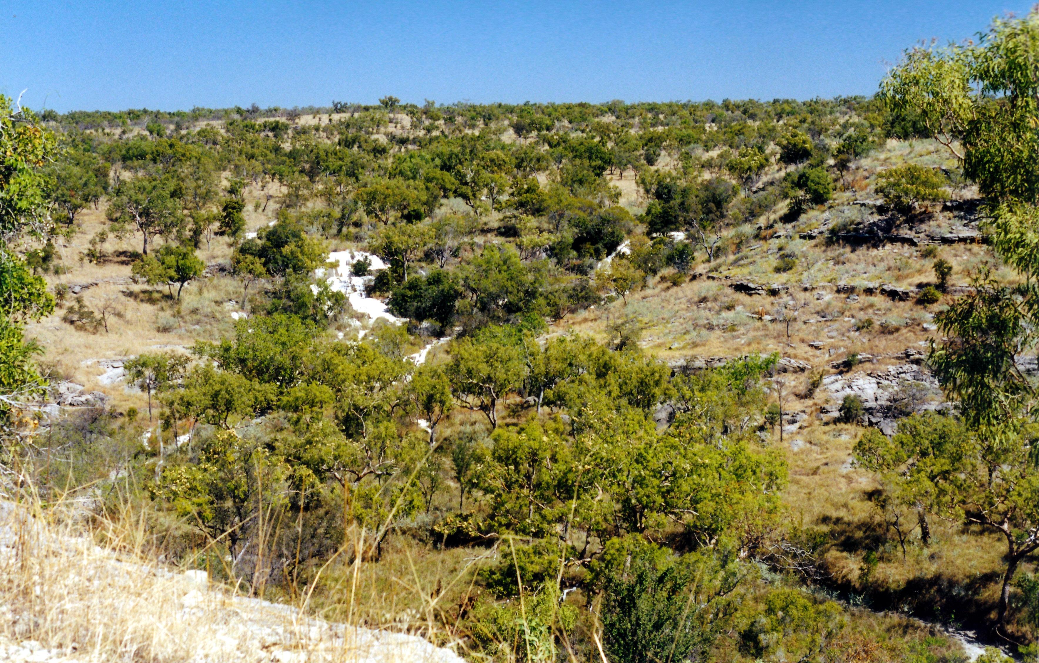 06-22-2000 02 calcite near Limestone Gorge.jpg