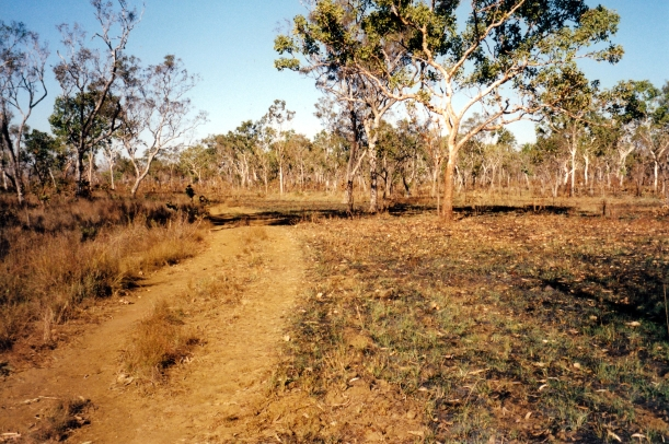 07-18-2000 03 track to Turtle Pool camp.jpg
