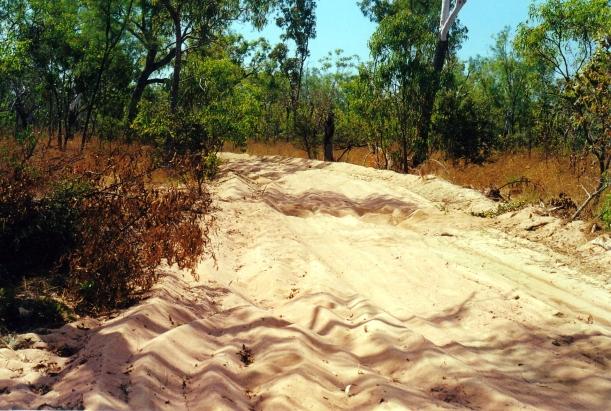 08-01-2000 sandy track.jpg