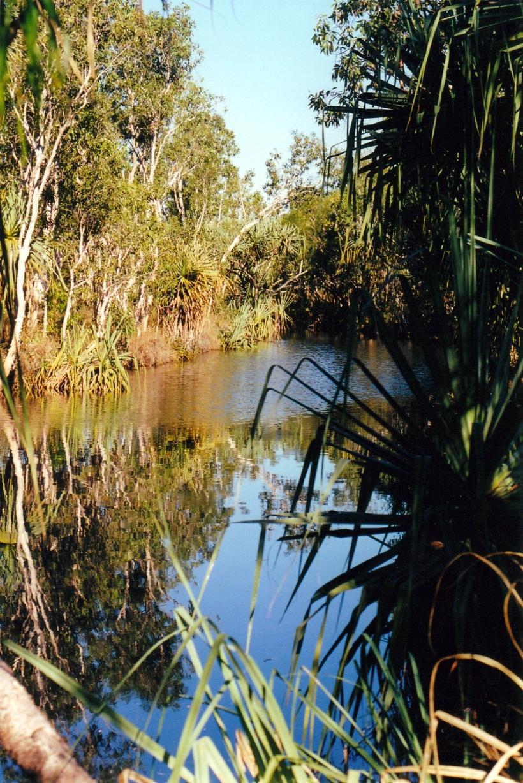 08-02-2000 pago creek waterhole.jpg