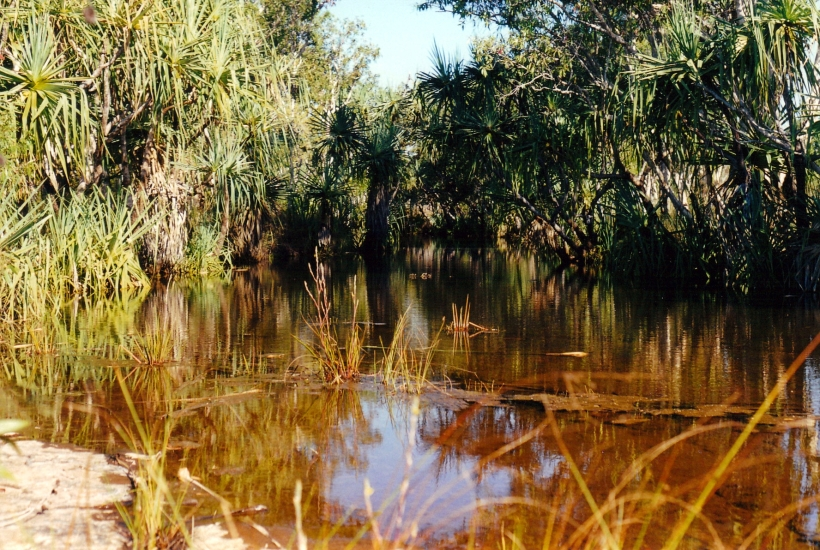 08-02-2000 pago creek