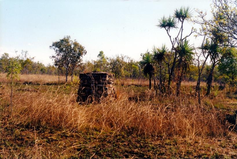 08-02-2000 remnant Pago ruins.jpg