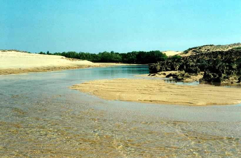 08-28-2000 09 creek mouth Middle Lagoon.jpg